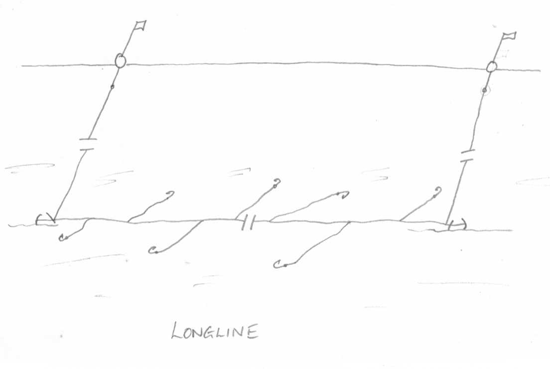 drawing of a longline